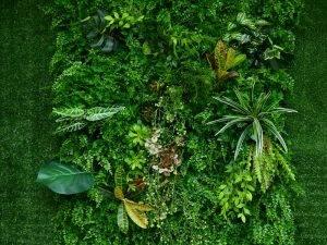 Abingdon's Garden Landscaping