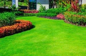 April-lawn