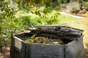 August_composting