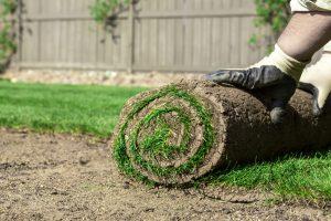 abingdons-new-turf