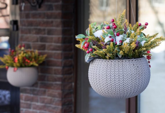 winter-hanging-baskets