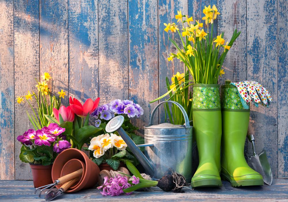 spring-landscaping