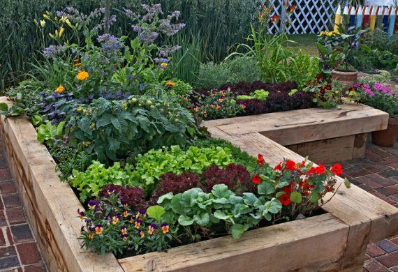 raised-flower-beds