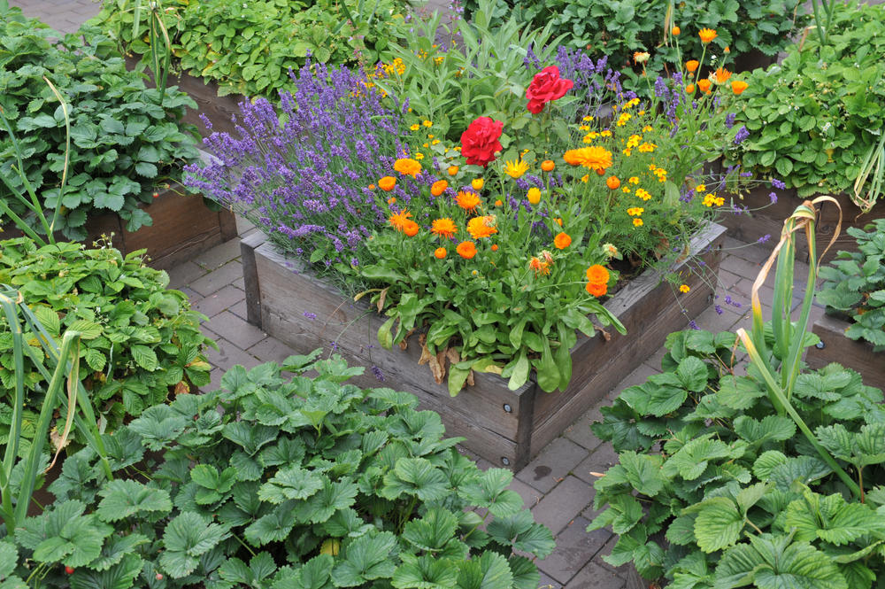 july-garden-jobs